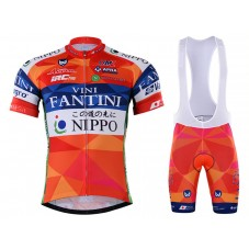 2017 Nippo-Vini Fantini Cycling Jersey And Bib Shorts Kit