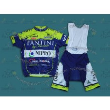 2014 Vini Fantini NIPPO  Cycling Jersey And Bib Shorts Set