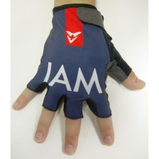 2015 Team IAM Vertical - Cycling Gloves