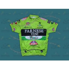 2012 Farnese Vini-Selle Italia Fluorescent Cycling Jersey